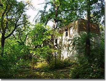 A millennium idején Budapest legnagyobb vendéglője volt a népligeti