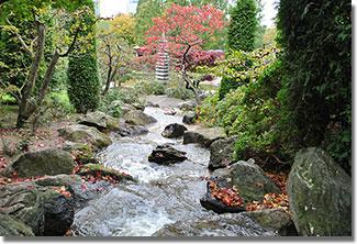 Célszerű és élvezetes vízgazdálkodás a 200 éves Népligetben