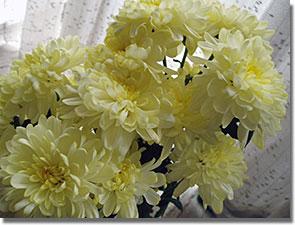 Laci bácsi virágai, családi körben...