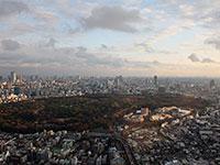 A Yoyogi-park Tokió Harajuku negyedében