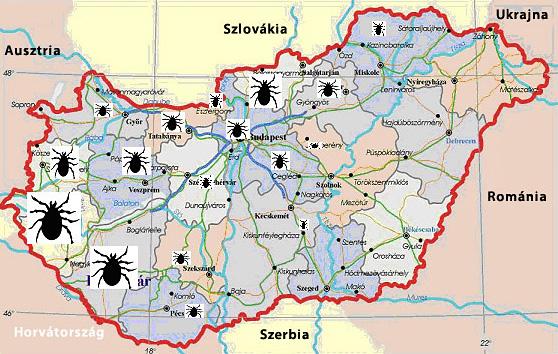 Magyarország kullancsfertőzöttségi térképe